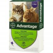 Advantage препарат для профилактики и лечения инвазии блох у кошек и декоративных кролей весом свыше 4 кг 1 пипетка 0,8 мл