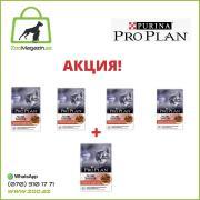 Акция! Pro Plan Junior для котят с говядиной в соусе (4+1)