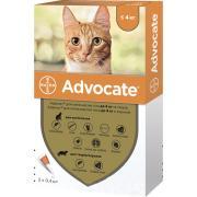Advocate для хорьков и котов массой до 4 кг эндоэктоцид спот-он применения 1 пипетка 0,4 мл