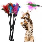 Игрушка-дразнилка для кошек и собак