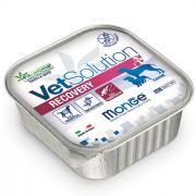 Vet Soulution Recovery восстановительная диета для ослабленных собак 150 гр