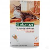 Advantage капли на холку от блох для котят и кошек весом менее 4 кг 1 пипетка 0,4 мл