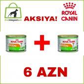 Акция 1+1! Royal Canin Adult Beauty консервы для взрослых собак с 10 месяцев до 8 лет, для поддержания здоровья кожи и шерсти, 195 г