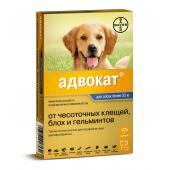 Advocate для собак от 25 до 40 кг эндоэктоцид 1 пипетка 4,0 мл