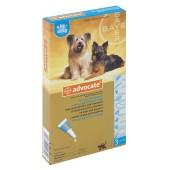 Advocate для собак от 4 до 10 кг эндоэктоцид 1 пипетка 1,0 мл