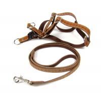 Шлейка и поводок (100/2см) (комплект),  для собак средних пород