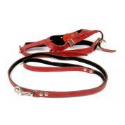 Шлейка и поводок (100/1см) (комплект),  для щенков средних пород и взрослых собак карликовых пород