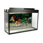Аквариум для рыб 60×20×40 см (Д×Ш×В), 48 л