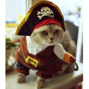 Костюм пирата для кошек, размер S