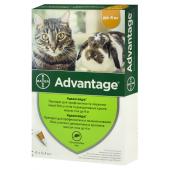 Advantage препарат для профилактики и лечения инвазии блох у кошек и декоративных кролей весом до 4 кг 1 пипетка 0,4 мл