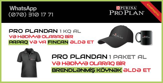 3Pro Plan