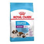 Royal Canin Giant Starter сухой корм для щенков гигантских пород до 2 месяцев, беременных  и кормящих сук (целый мешок 15 кг)