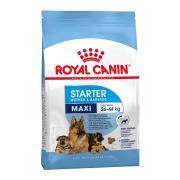 Royal Canin Maxi Starter сухой корм для щенков крупных пород  до 2-ух месяцев, беременных и кормящих сук (целый мешок 15 кг)