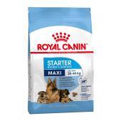 Royal Canin Maxi Starter сухой корм для щенков крупных пород  до 2-ух месяцев, беременных и кормящих сук (на развес)