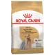 Royal Canin Yorkshire Terrier Adult сухой корм для собак породы йоркширский терьер