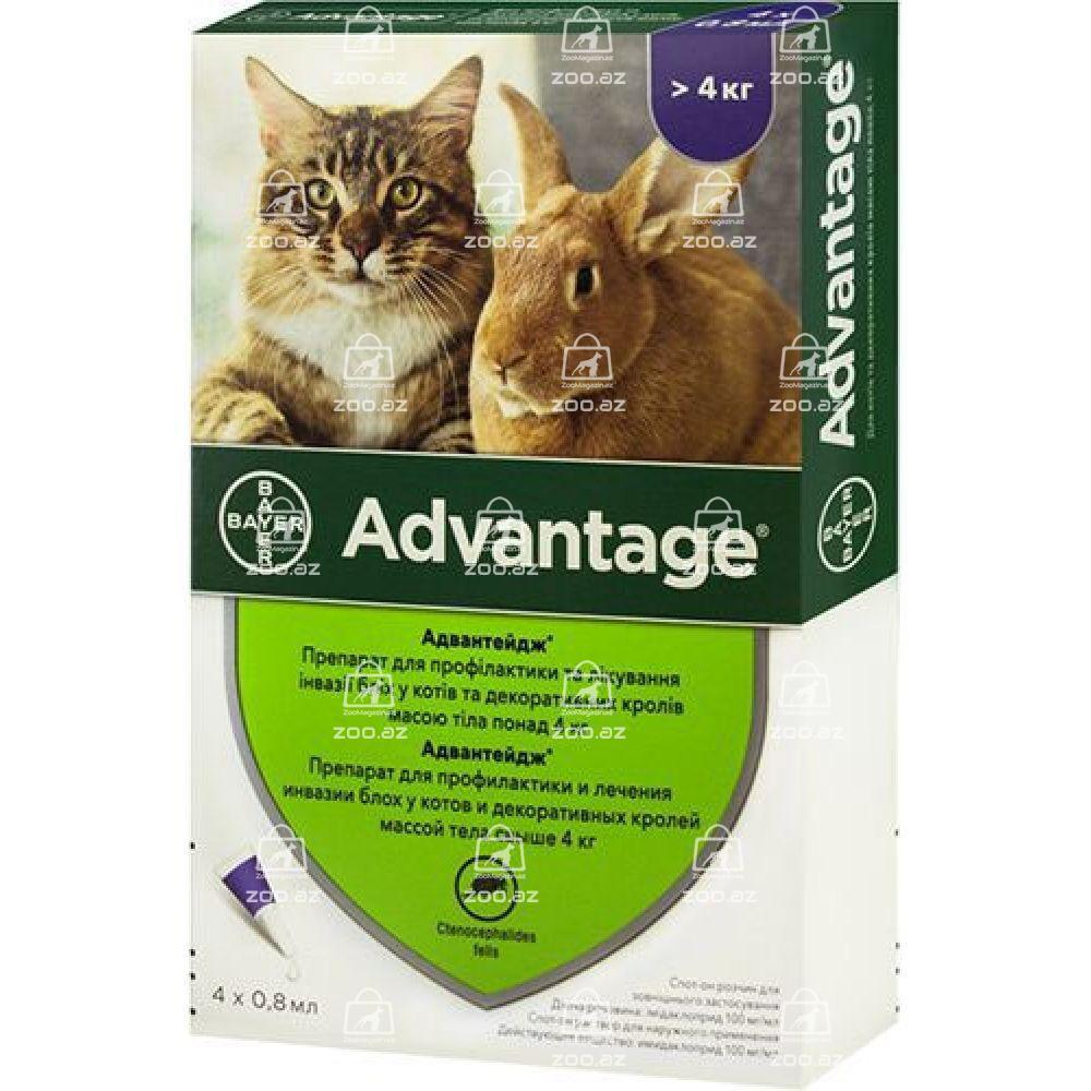 Advantage для кошек от блох и клещей
